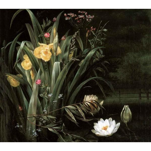 Живописные лилии